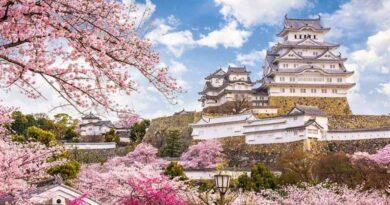 Jalan-jalan ke Jepang Saat Covid-19